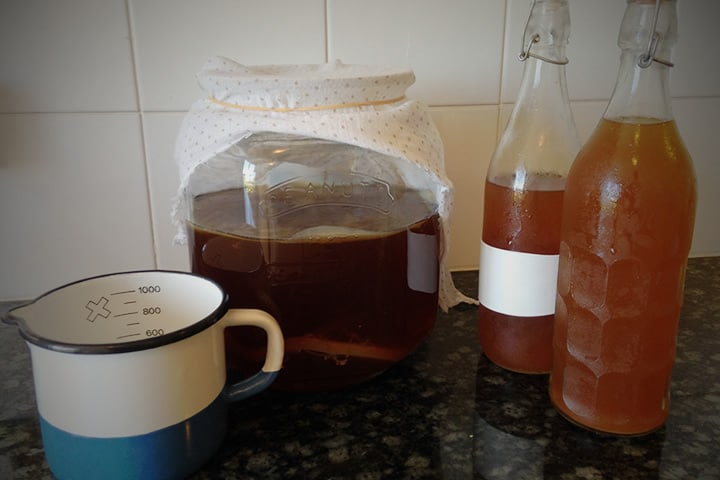 Beginners Guide to Making Kombucha