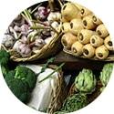 Prebiotics plant fiber