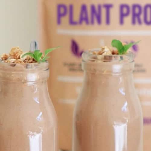 Plant Protein Smoothie