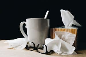 tips for the flu season